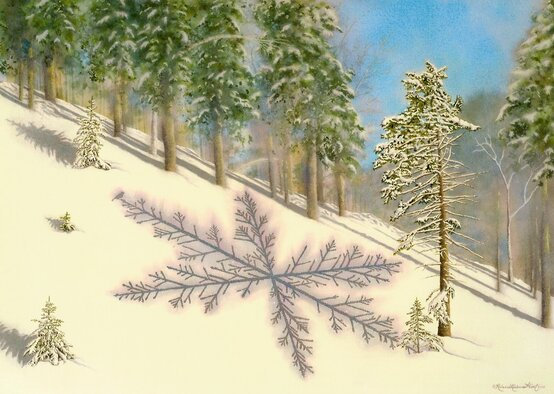 Nature art from studio d'une. Red spruce as one with the sparkling snow.