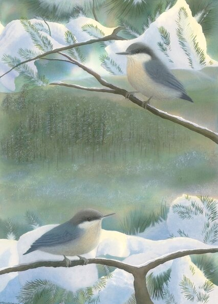 Unique nature art from studio d'une. Pygmy nuthatch as one with the winter forest.
