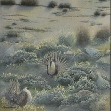original painting - studio d'une - home for sage grouse